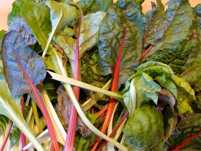 Assorted chard leaves