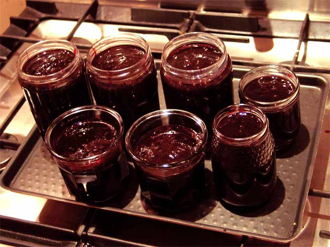 Blackberry Jam\Jelly with Star Anise
